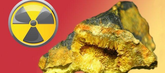 Secuelas tras manipulación de uranio. Alumnos de CESUR Murcia opinan.
